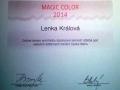 Kadernice Lenka Kralova_2014 magic color